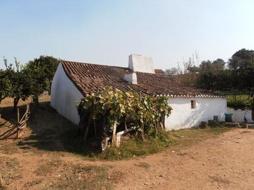 Rural for sale in Borba