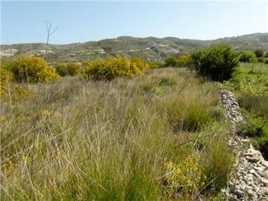 Land for sale in Lania