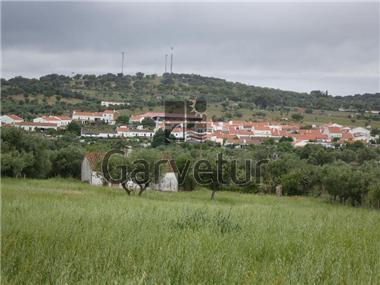 Land for sale in Alcacovas