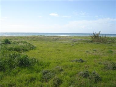Land for sale in Perivolia
