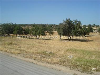 Land for sale in Polemidhia Camp