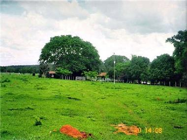 Land for sale in Silvania
