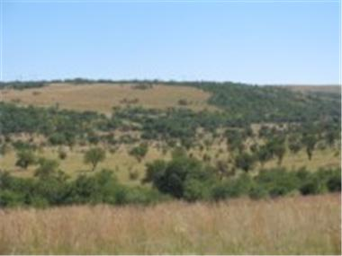 Land for sale in Potchefstroom