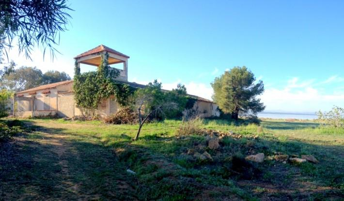 Finca for sale in La Mata