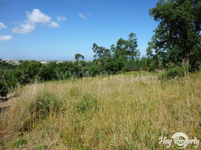 Land/Ruins for sale in Igreja Nova