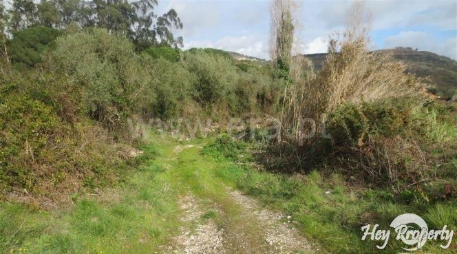 Land/Ruins for sale in Santo Estevao das Gales