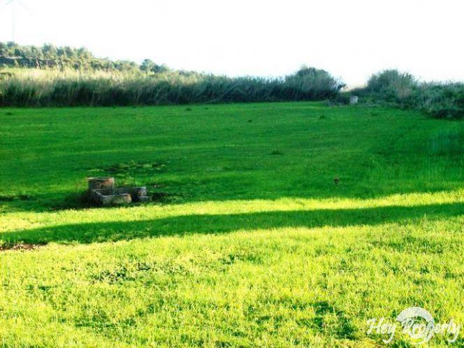 Land/Ruins for sale in Serra de El-Rei