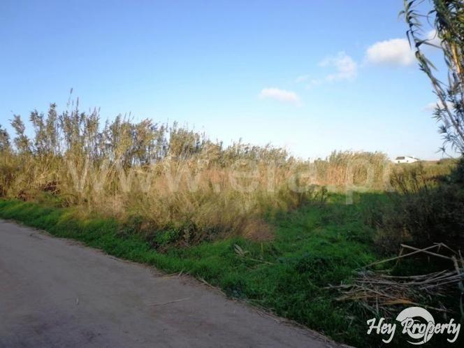 Land/Ruins for sale in Ferrel