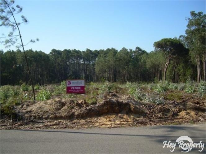Land/Ruins for sale in Monte Real