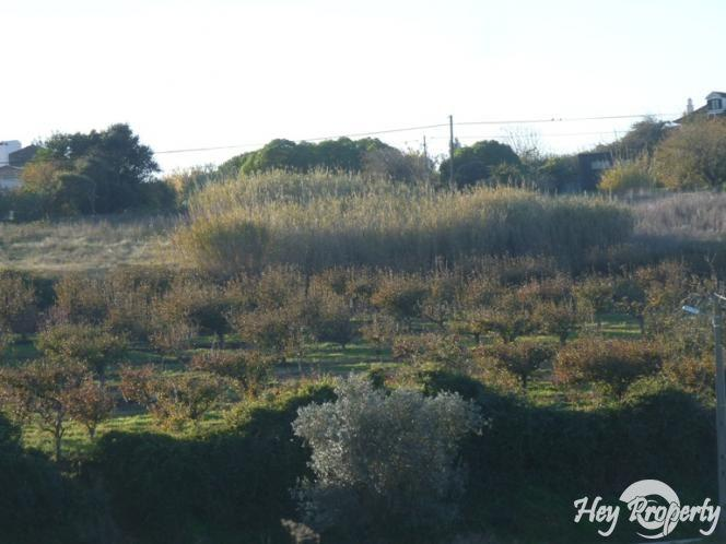 Land/Ruins for sale in Carvalhal