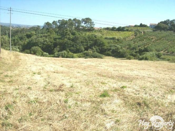Land/Ruins for sale in Alcobaca