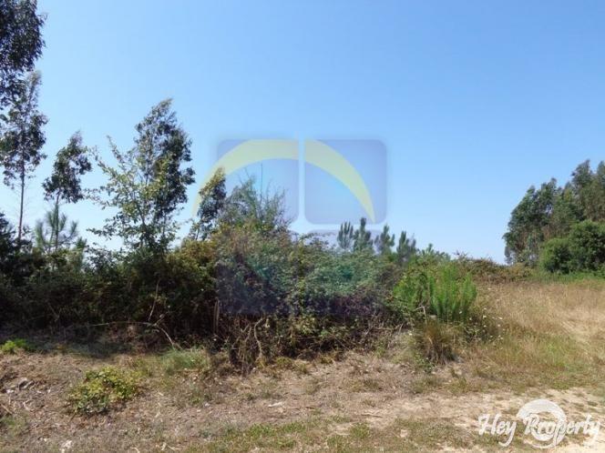 Land/Ruins for sale in Cela