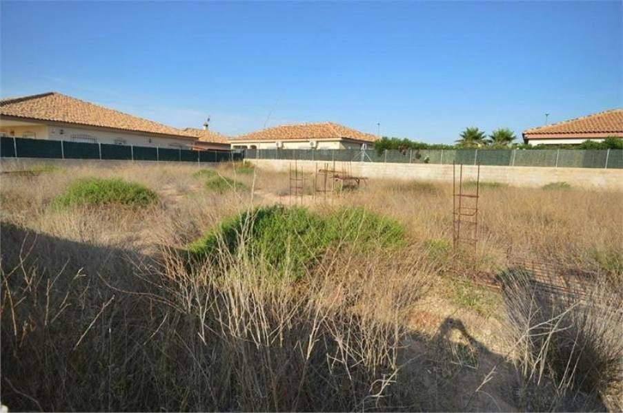 Land/Ruins for sale in Torre-Pacheco