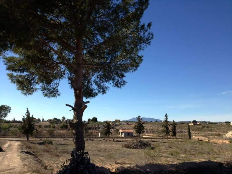Land/Ruins for sale in Avileses