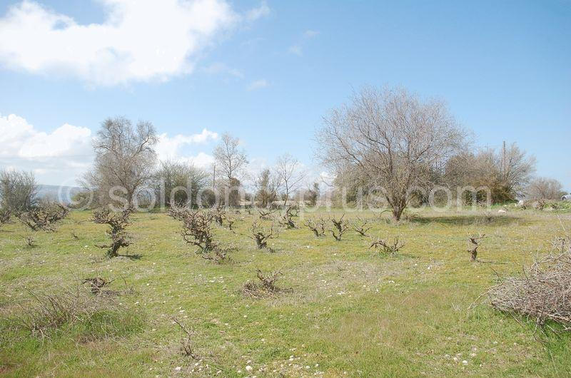 Land/Ruins for sale in Lasa