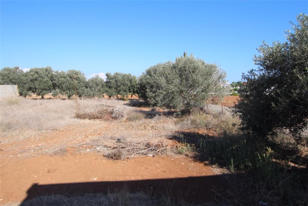 Land/Ruins for sale in Pernera