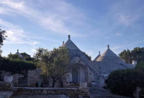 Farmhouse for sale in Ostuni