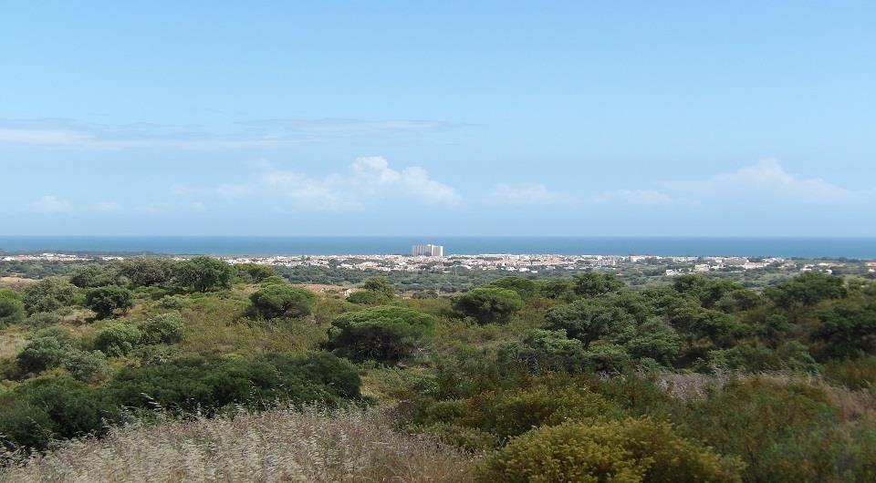 Land/Ruins for sale in Vila Real de Santo Antonio