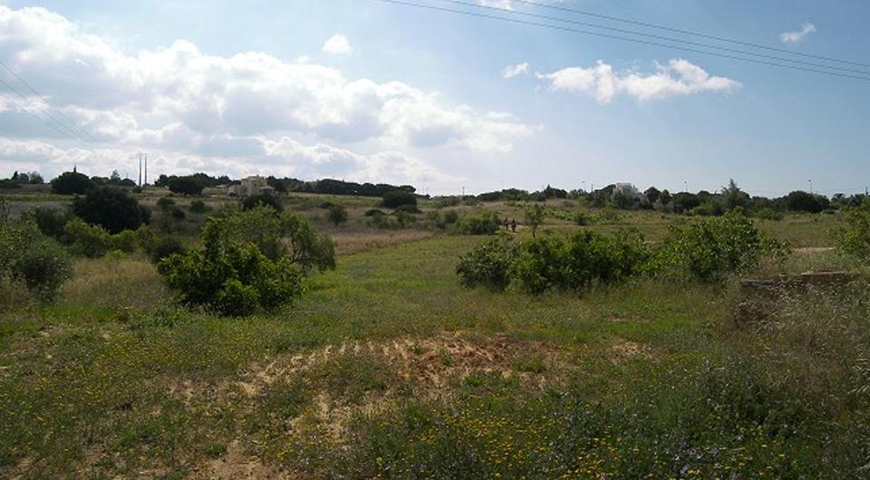 Land/Ruins for sale in Lagoa