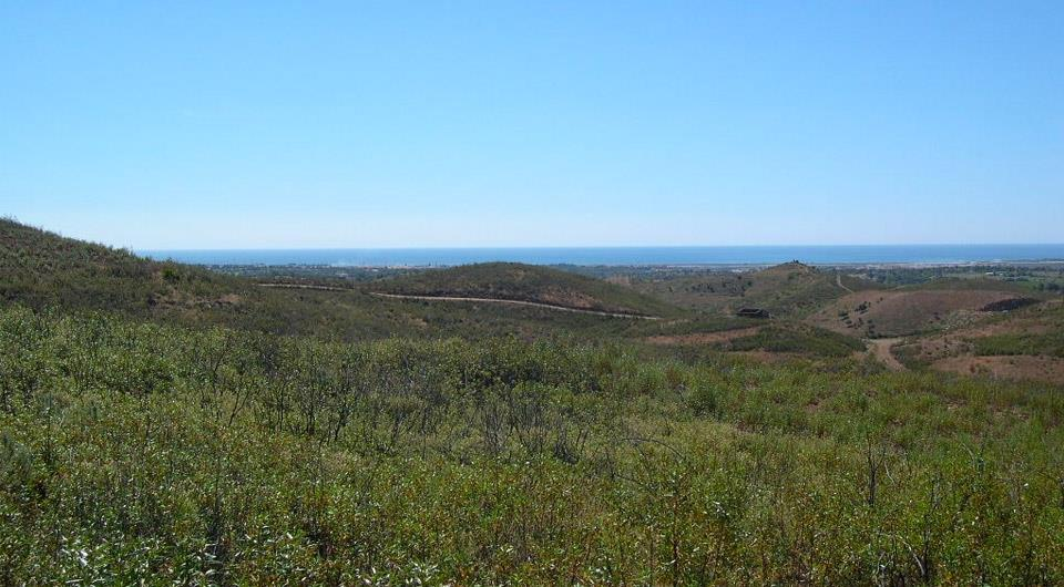 Land/Ruins for sale in Tavira