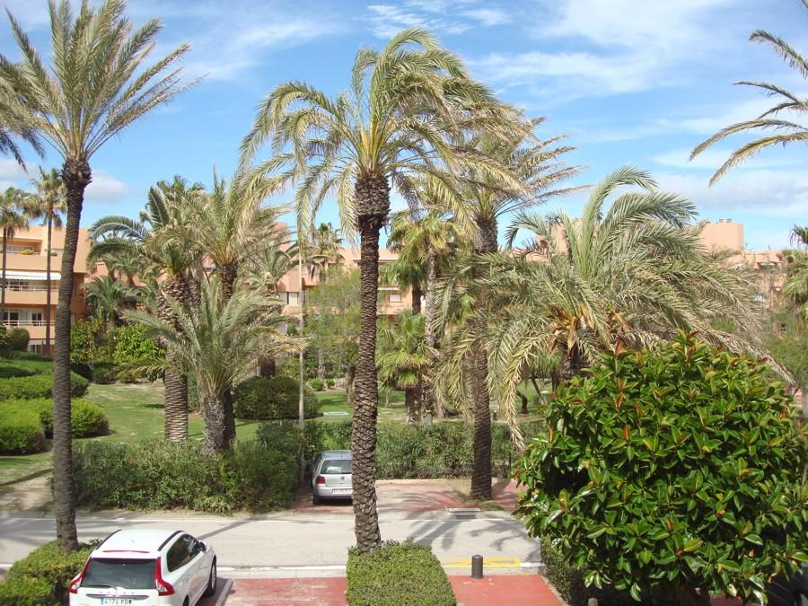 Apartment/Flat for sale in Puerto Sotogrande