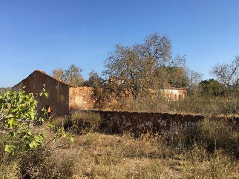 Land/Ruins for sale in Sao Bartolomeu de Messines