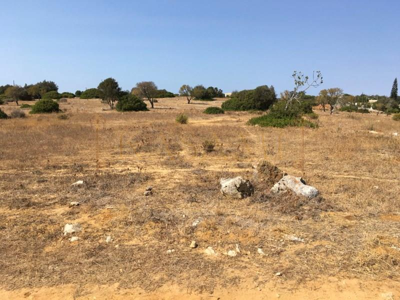 Land/Ruins for sale in Luz