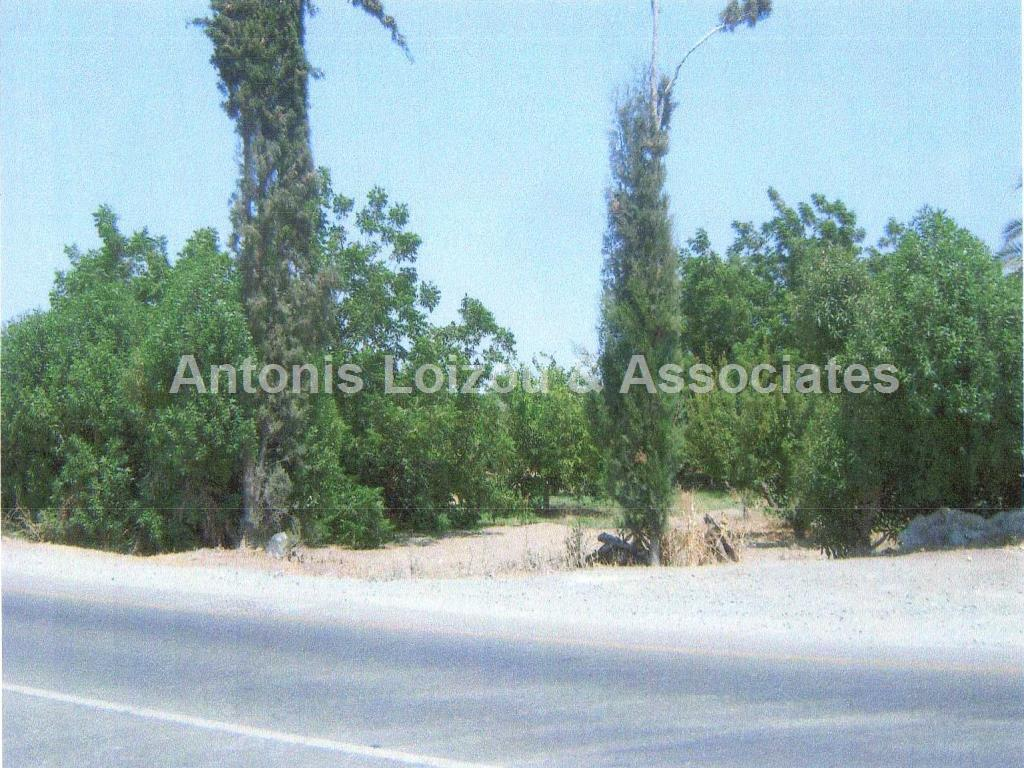 Land/Ruins for sale in Kolossi