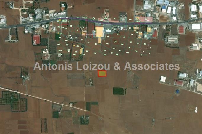 Land/Ruins for sale in Kokkini Trimithia