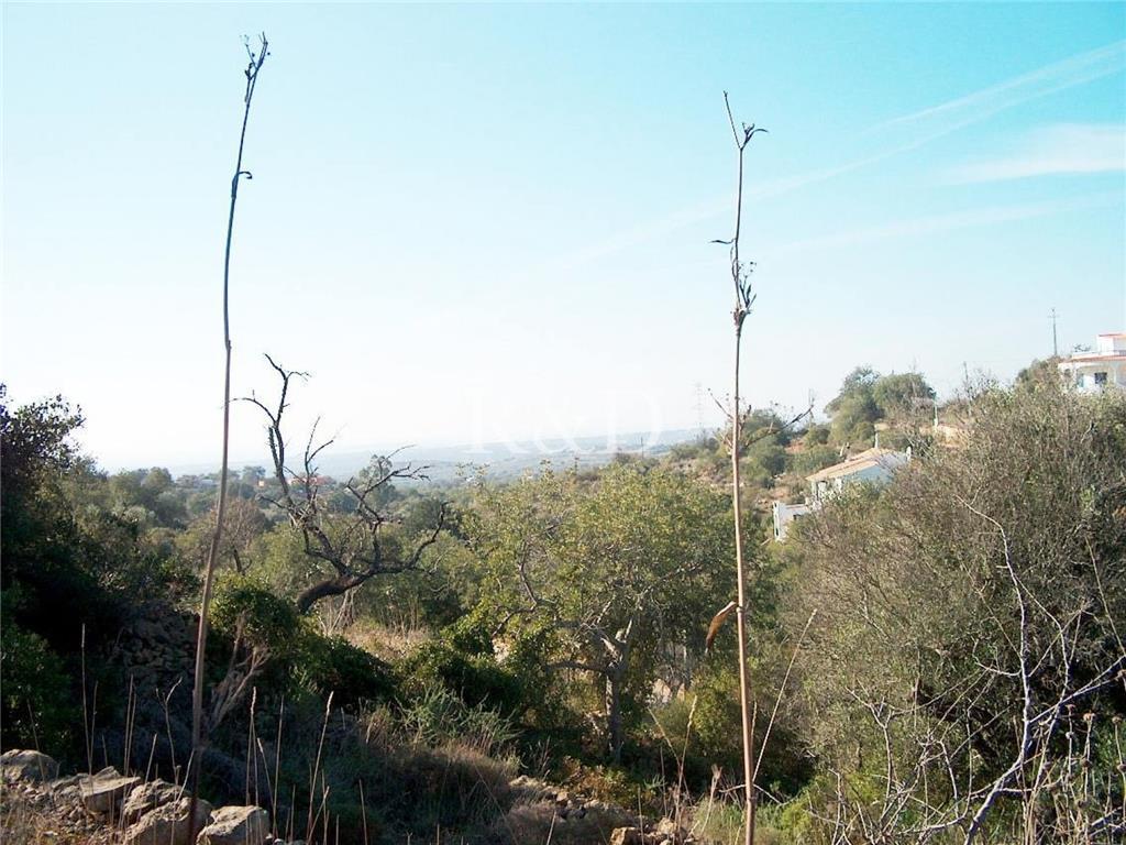 Land/Ruins for sale in Sao Bras de Alportel