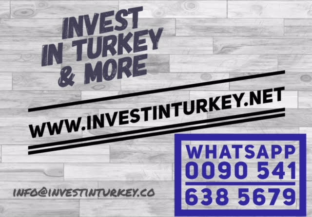 Invest In Turkey Logo